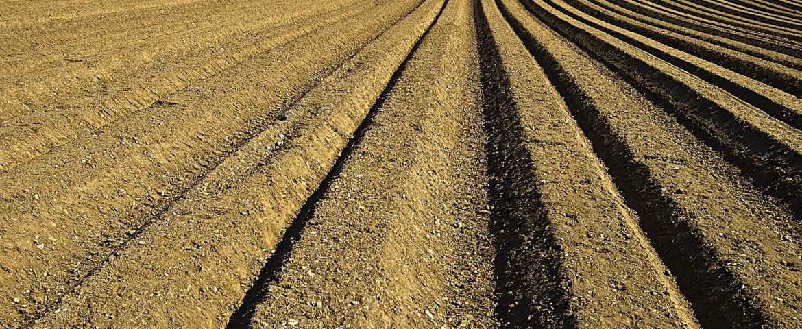AGROLUTION Agriculture Technology and Knowledge