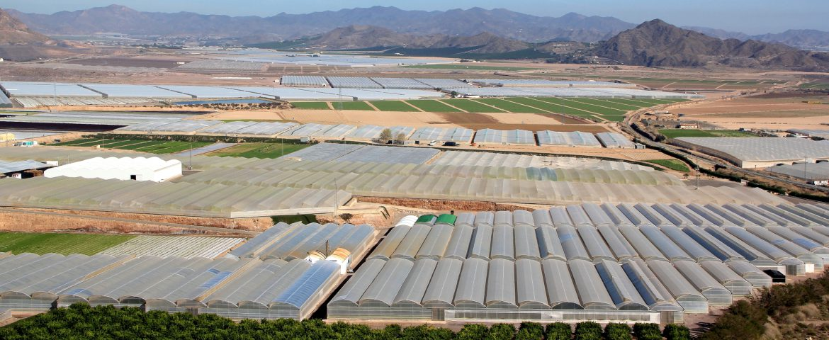 AGROLUTION Greenhouses